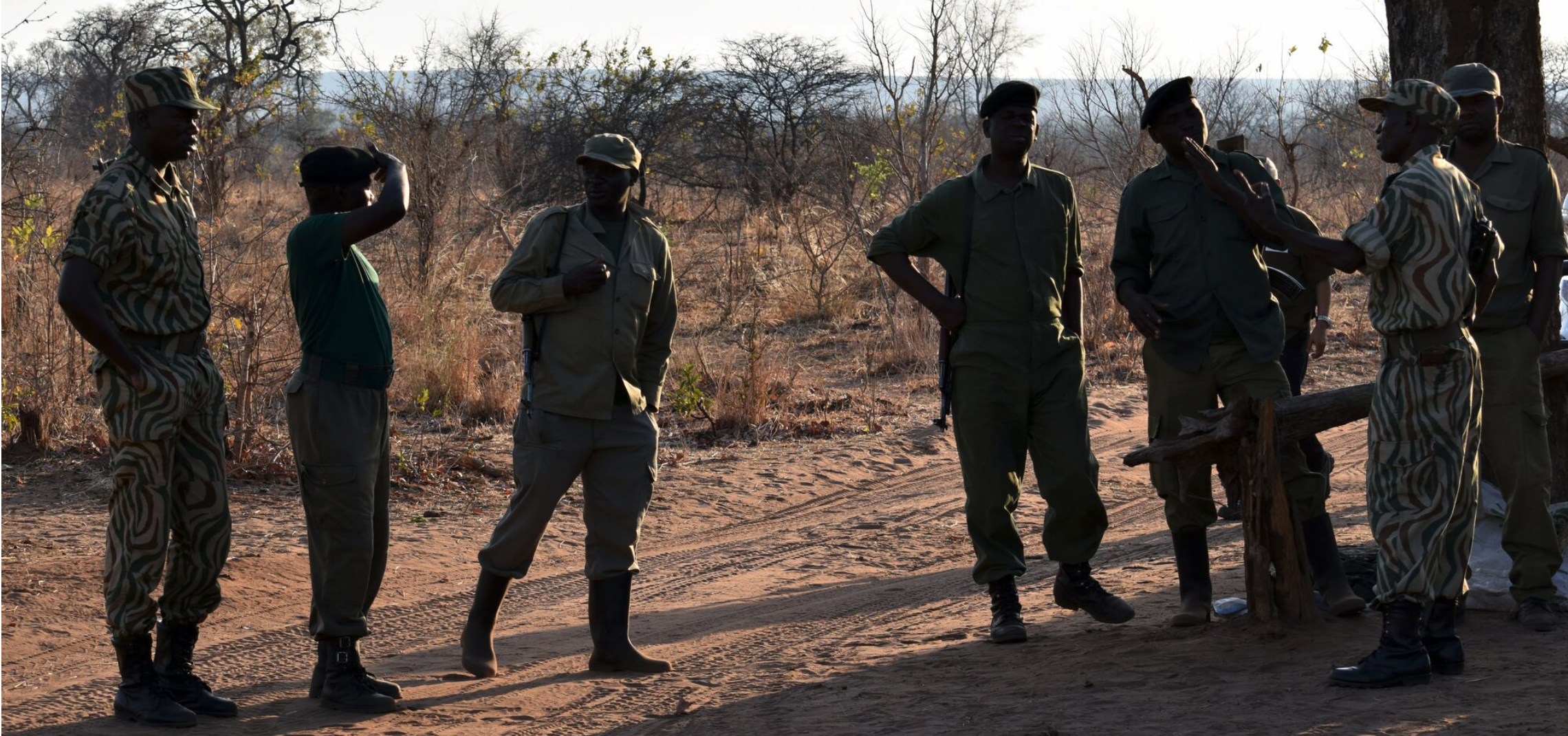 wildlife rangers in Zambia