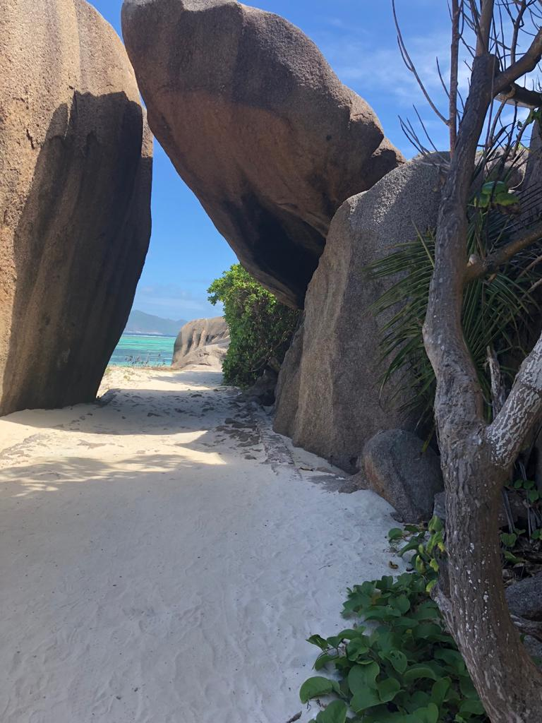 Seychelles granitic foundations can be found as natural architecture
