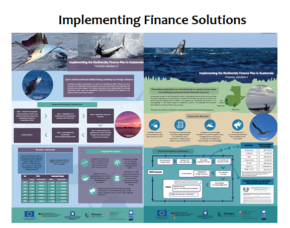 Implementing Finance Solutions