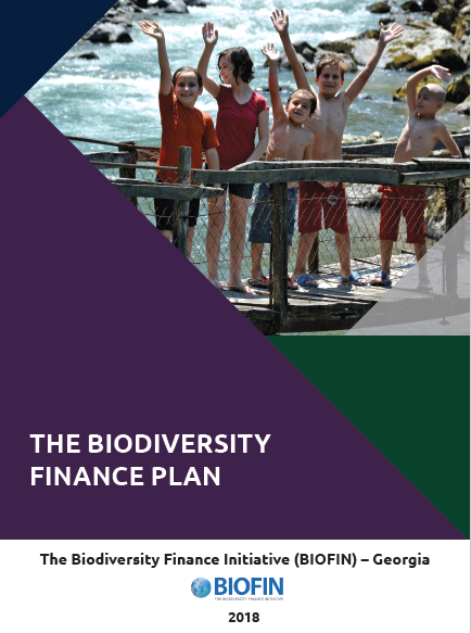 The Biodiversity Finance Plan (BFP)
