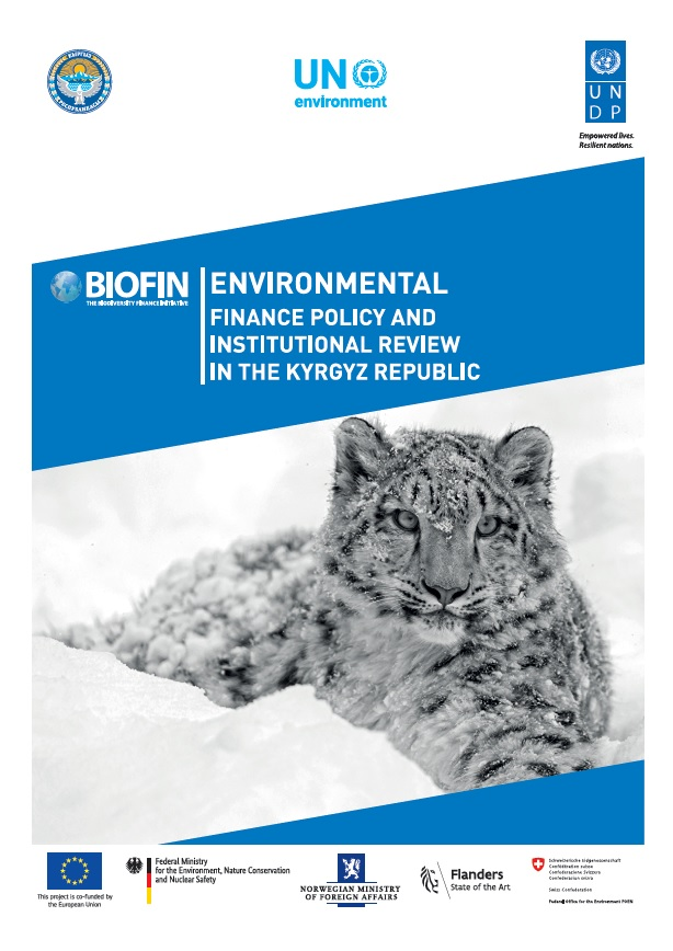 Environmental Finance Policy and Institutional Review in the Kyrgyz Republic