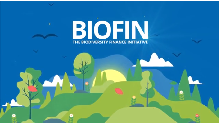 BIOFIN Philippines Video
