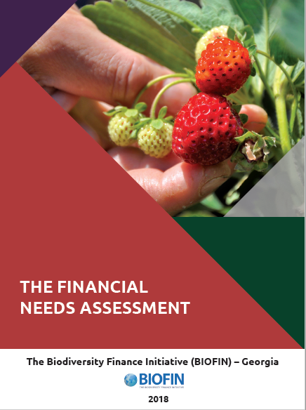 The Financial Needs Assessment (FNA)