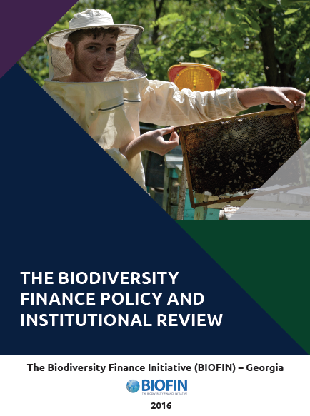 The Biodiversity Finance Policy and Institutional Review (PIR)
