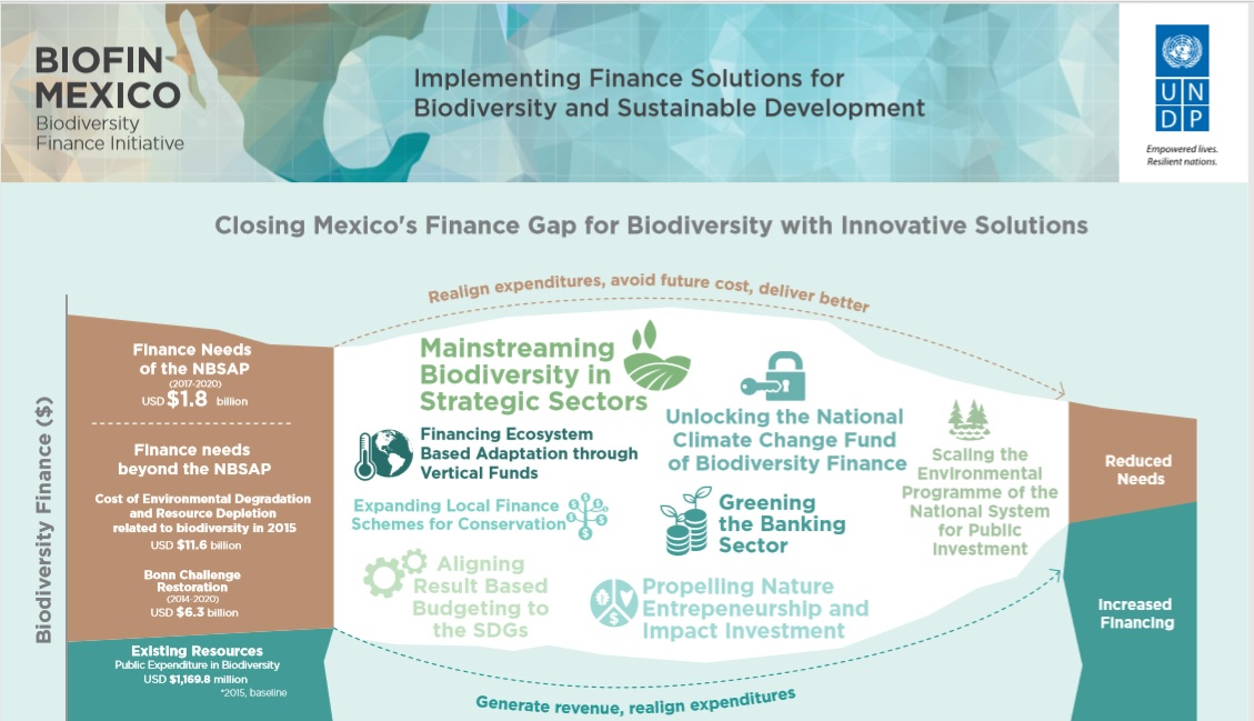 Mexico's Finance Solutions Poster