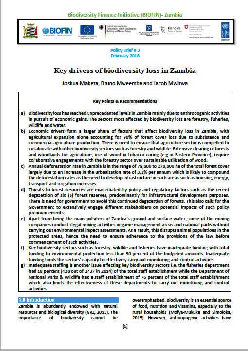 policy brief 3 Zambia