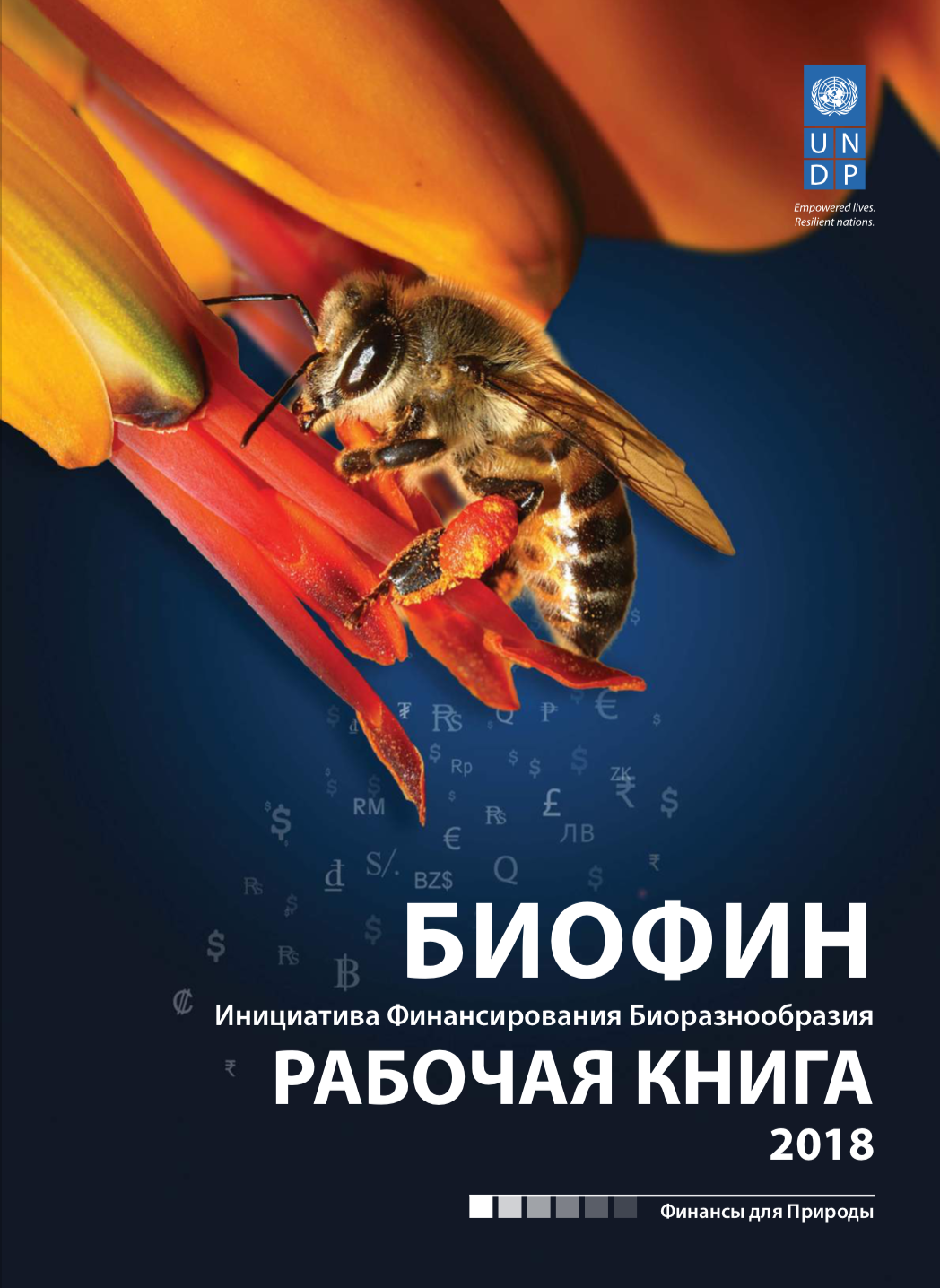 Russian workbook 2018