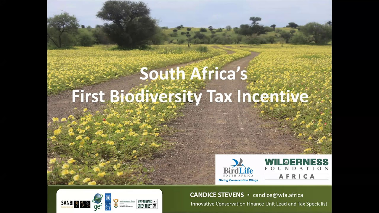 Implementing the biodiversity finance plan