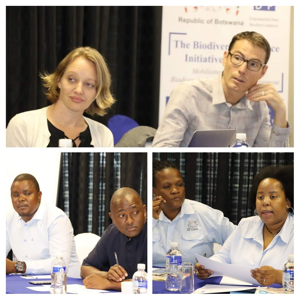 Botswana BFP workshop