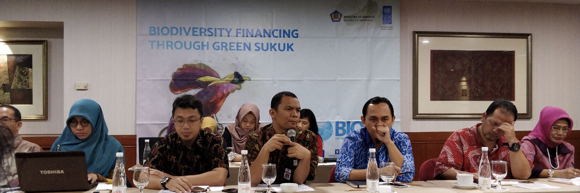 Indonesia green sukuk