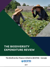 The Biodiversity Expenditure Review (BER)