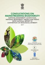 Consultations on Mainstreaming Biodiversity