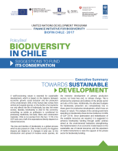 policy brief Chile