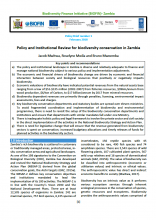 policy brief 1 Zambia