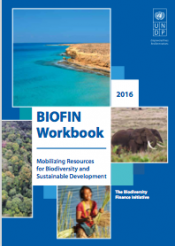 BIOFIN Workbook cover