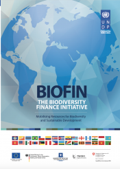 BIOFIN ENGLISH Brochure